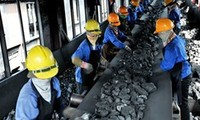 Vietnam supports APEC mining cooperation initiatives