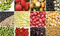 China is ready to import Vietnamese farm produce