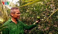 Outstanding farmer Thach Em