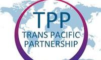 APP: Vietnam is Australia's potential market