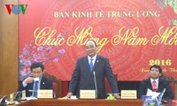 Deputy Prime Minister works with central economic commission