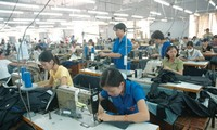 Korean firms interested in Vietnam's garment and textile sector