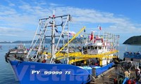 Vietnam Fisheries Association denounces China's illegal fishing ban