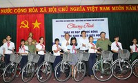 Deputy Prime Minister Truong Hoa Binh's working visit in Quang Nam