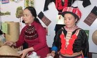 表彰100名优秀民族妇女