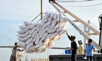 今年前三季度越南大米出口达376万吨