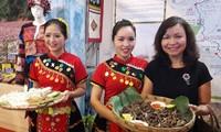 """""""越南各地乡村庙会—本色、过去和现在""""展在河内举行"""