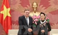 越南国会主席阮氏金银会见瑞典和匈牙利驻越大使