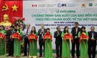 越南稻米可持续生产计划启动