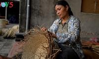 发挥越南妇女在新农村建设中的作用