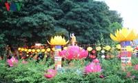 越南多个地方举行举行佛历2561年佛诞大典活动