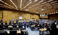 IAEA敦促朝鲜弃核