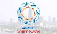 APEC 2017:越南发挥东道主作用并做出积极贡献