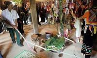 La Ha족 사람과 죽순꽃 축제