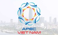 APEC 2017: les médias étrangers à propos du rôle et de la position du Vietnam