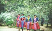 Le Têt des Mong