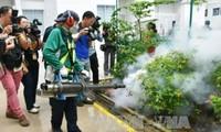 В Сингапуре число случаев заражения вирусом Зика превысило 242 человека
