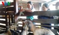 Хбоп Аиун – лучший пример преодоления трудностей и повышения благосостояния в провинции Даклак