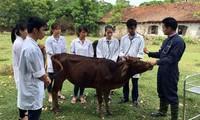 Молодой преподаватель отдает все свои помыслы оказанию помощи студентам в трудоустройстве