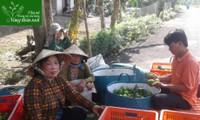 Нгуен Тхи Хюэ - лучший пример преодоления трудностей и повышения благосостояния в городе Кантхо