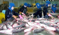 Forum on Vietnam catfish exports to EU opens in Brussels