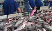 US Senators move to nullify new catfish inspection rules
