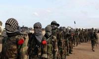 US airstrikes kill 12 Al-Shabab militants in Somalia