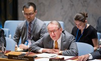UN Security Council stresses need to counter IS and Al-Qaeda