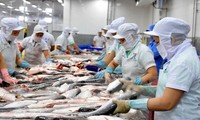 12 more Vietnamese catfish processors qualified for US market