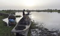 Boko Haram kill 31 fishermen in Nigeria