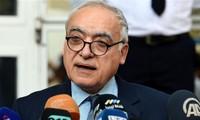 UN envoy for Libya focuses on institutions