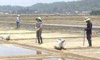 Село по добыче соли Шахуинь в провинции Куангнгай