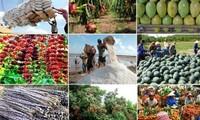 Реструктуризация сельского хозяйства: повышение добавленной стоимости продукции