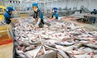 Рыбная отрасль СРВ всё ещё сталкивается с трудностями в увеличении экспорта в 2017 году