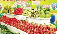 Расширение рынка экспорта овощей и фруктов Вьетнама