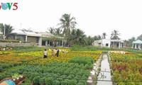 Изменения в провинции Бенче при строительстве новой деревни