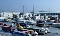 Vietnam, Egypt cooperate in logistics