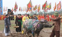 Fiesta Tich Dien estimula desarrollo agrícola