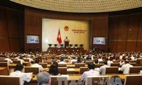 Parlamentarios vietnamitas abordan por endurecer la ley de utilización de armas