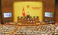 Parlamento vietnamita debate la garantía de la seguridad alimentaria
