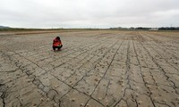 Alcaldes de las mayores ciudades del mundo instan al G20 a salvar el planeta
