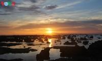 Atractiva isla de Ly Son