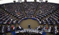 Parlamentarios europeos determinados en la lucha anticorrupción
