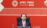 Tran Dai Quang à la clôture du 24ème sommet de l'APEC