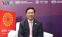L'APEC croit dans l'année de l'APEC 2017 au Vietnam