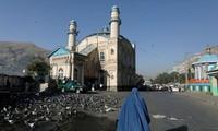 Deux attentats font près de soixante morts en Afghanistan