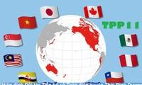 Asie-Pacifique: vers un accord de libre-échange sans les Etats-Unis