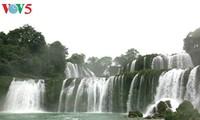 ទឹកជ្រោះ Ban Gioc - ទឹកជ្រោះធម្មជាតិធំបំផុតនៅអាស៊ីអាគ្នេយ៍