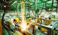 Doanh nghiệp FDI chiếm tỷ trọng cao về lợi nhuận và nộp ngân sách