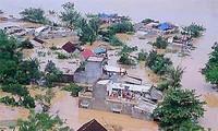 Việt Nam nỗ lực chống biến đổi khí hậu
